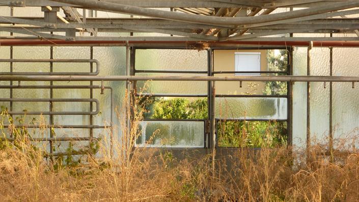 Raumplanung, Architektur, Ingrid Eberl, Lehre, Gemüse für alle